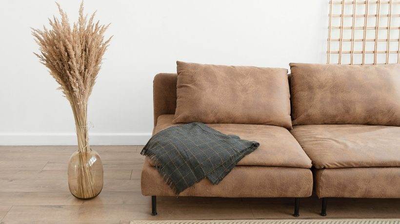 How to clean a suede couch with household products?